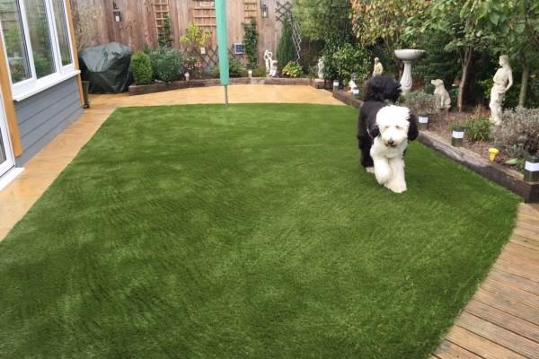 Artificial Grass Project - Dawlish Warren