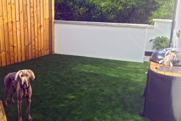Artificial Grass Project - Devon